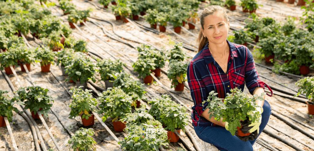 Potpora mladim poljoprivrednicima - Mjera 6.1.1.